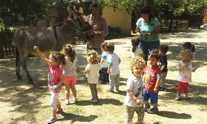 visita_granja_escuela_may2016